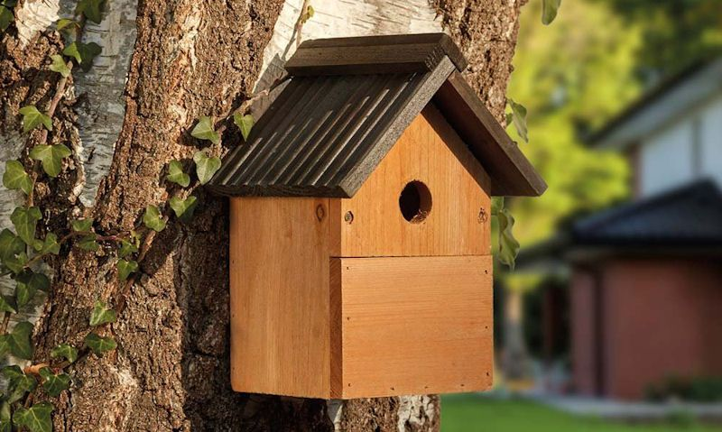 Traditional wooden bird box fixed to tree