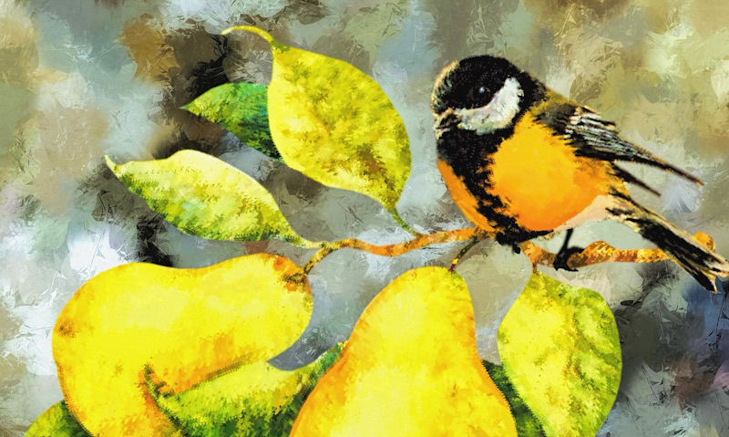 Tit perched on pear tree, watercolour theme