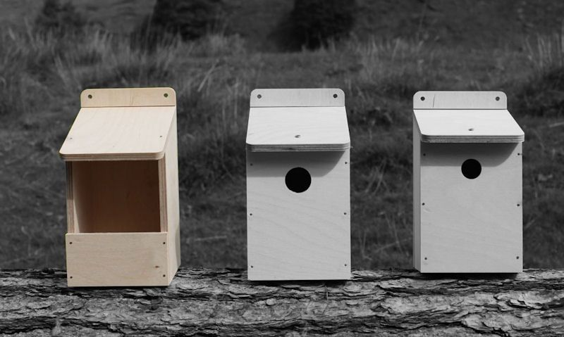 Robin nest box size