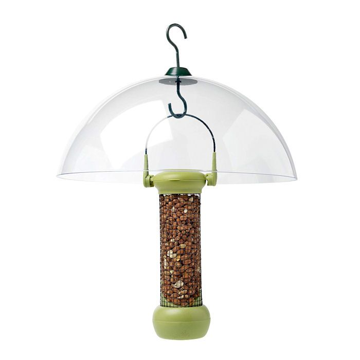 Petface clear dome covering seed feeder