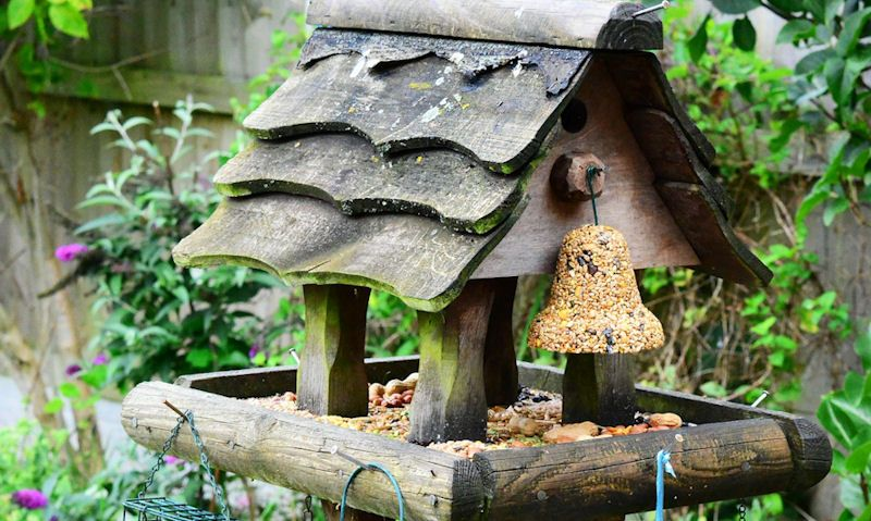 What to put on a bird table