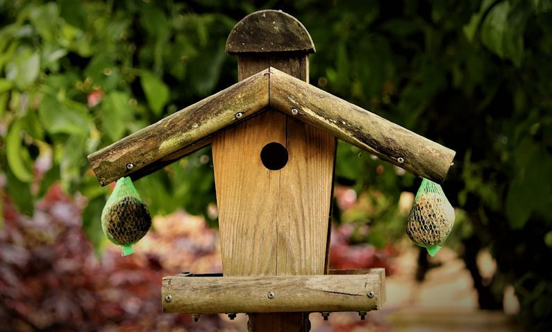 Weathered wooden bird table with netted hanging fat balls